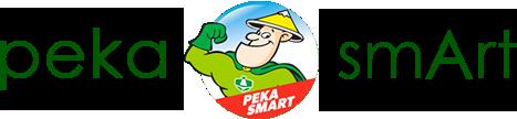 pt petrokimia kayaku official site pt petrokimia kayaku official site